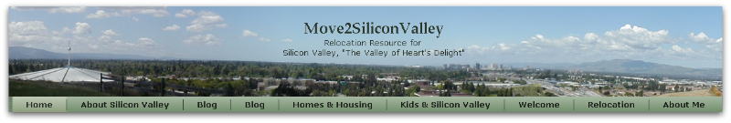 Move2SiliconValley header